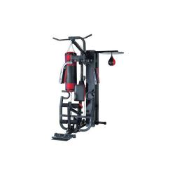 GATEGOLD One Station Multi-Gym GG3001C-1